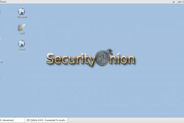 security onion
